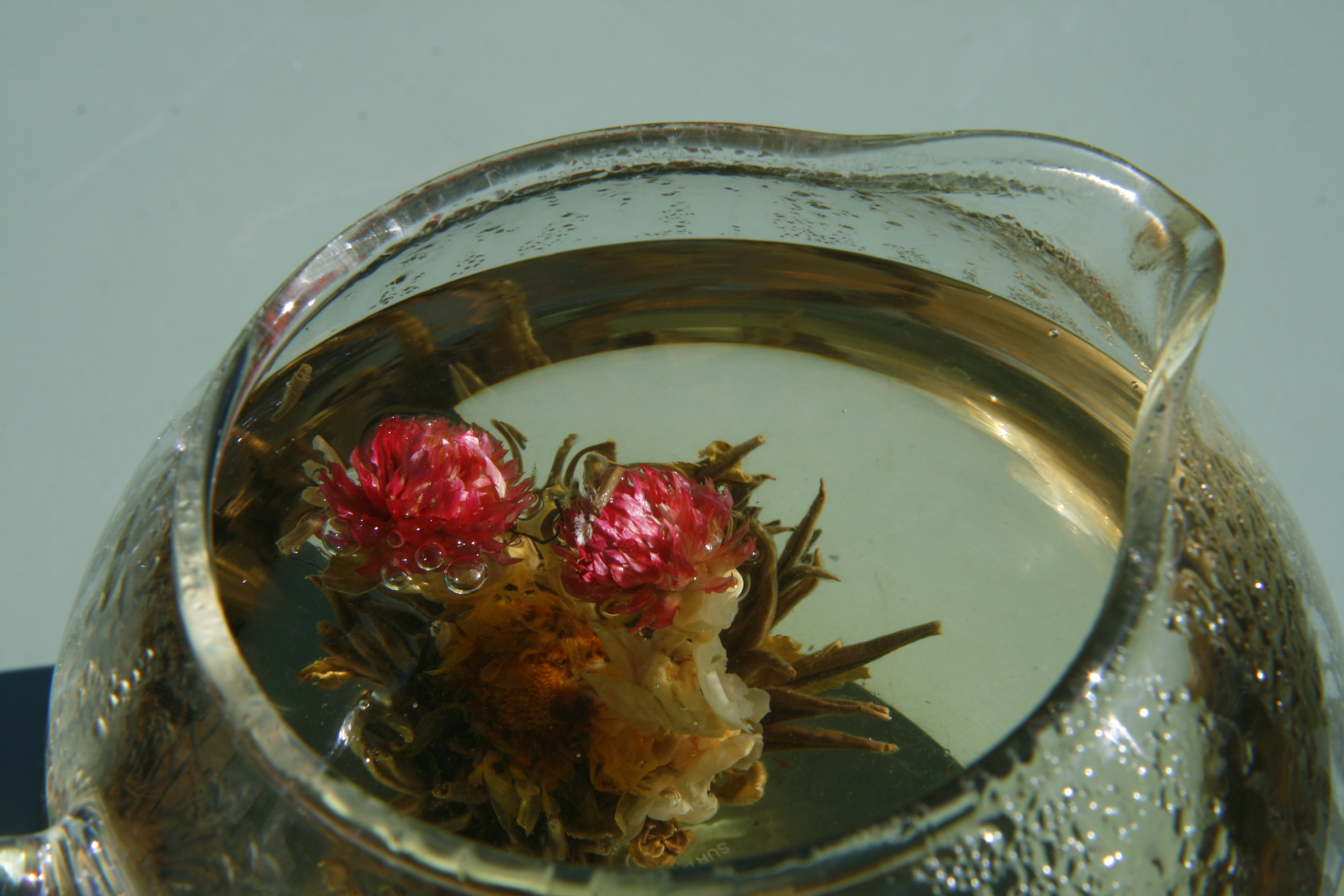 la fleur de thé au jasmin – pékin, lost in translation